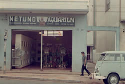 Netuno Aquarium na Avenida Washington Luis em 1969